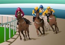 Konkurrens för springa för hästar Arkivbilder