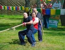 Konkurrenser i dragkamp bland män Arkivbilder