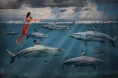 Konkurrenskraftig affärsidé med affärskvinnan och hajar royaltyfri foto