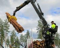 Konkurrent som staplar trä i finlandssvenska journalpäfyllningsmästerskap 20 Fotografering för Bildbyråer