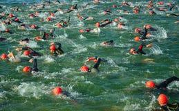 Konkurrenten im Wasser, welches das Schwimmenstadium von Triathlon beginnt, Lizenzfreies Stockfoto