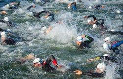 Konkurrenten im Wasser, welches das Schwimmenstadium von Triathlon beginnt, Lizenzfreie Stockfotos