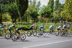 Konkurrierende Radfahrer, Ansicht von hinten Stockbild