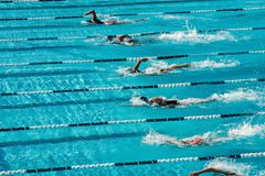 Konkurrierende Schwimmen Stockfoto