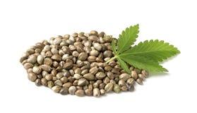 Konopiani ziarna z zielonym liściem zdjęcia stock