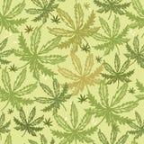 Konopiany bezszwowy deseniowy tło z różnymi liśćmi, ziołową medycyną i marihuany pojęciem, royalty ilustracja