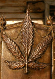 konopiany liść Zdjęcie Royalty Free
