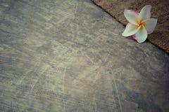 Konopie workowy tło z Plumeria - rocznika filtr Zdjęcia Royalty Free