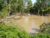 Konsequenz der nicht alten Flut des Flusses Stockfoto
