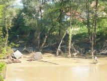 Konsequenz der nicht alten Flut des Flusses Lizenzfreie Stockfotografie