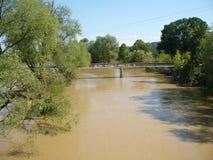 Konsequenz der nicht alten Flut des Flusses Stockfotografie