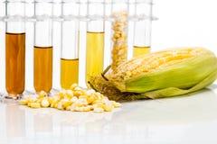 Konservera frambragt ethanolbiobränsle med provrör på den vita backgrouen royaltyfri bild