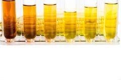 Konservera frambragt ethanolbiobränsle med provrör på vit bakgrund arkivfoto