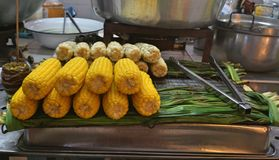 Konserverar den övre bilden för slutet av kokt gul havre och vit i thailändsk stil på den nya marknaden Lagad mat gul havre som ä fotografering för bildbyråer