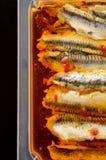 Konservierte Sardellenleisten im Paprikaöl Stockfotografie