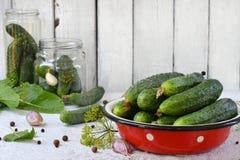 Konserwacja peklowanie ogórek Przygotowanie konserwacja od organicznie warzyw na lekkim tle Domowej roboty organicznie cru Obrazy Royalty Free