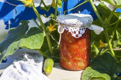Konserwować w domu, słój z kiszonymi warzywami Obraz Stock