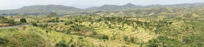 Konso, Ethiopia, Africa. Traditional terraced fields of Konso people, Ethiopia, Africa Royalty Free Stock Photography