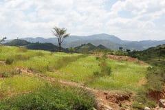 Konso, Etiopia, Africa Fotografie Stock