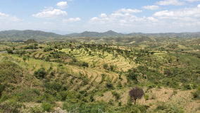 Konso, Etiopia, Africa Immagini Stock