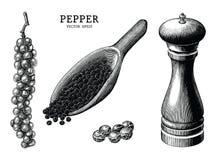 Konst för gem för tappning för attraktion för pepparsamlingshand som isoleras på vit b stock illustrationer
