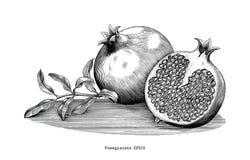 Konst för gem för tappning för granatäpplehandteckning som isoleras på vitbaksida vektor illustrationer