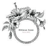 Konst för gem för tappning för teckning för hand för hibiskusblommaram vektor illustrationer