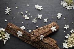 Konst fjädrar blommabakgrund Royaltyfri Bild