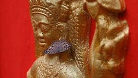Konst och kultur för buddismCambodja religion stock video