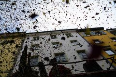Konstanz Fasnacht Confetti. Konstanz Fasnacht / Karneval celebration confetti shot from a pirate ship during the parade royalty free stock image