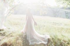 Konstbröllopfotografi Härlig brud med skor och klänningen med drevet mot suninnaturen arkivbild