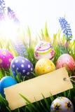 Konsteaster bakgrund med den easter ägg och våren blommar Arkivbilder