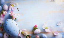 Konsteaster bakgrund med den easter ägg och våren blommar Fotografering för Bildbyråer