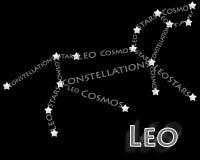 Konstellation Löwe vektor abbildung