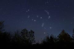 Konstellation von Orion im wirklichen nächtlichen Himmel, der Jäger Lizenzfreie Stockfotografie