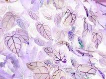 Konsten av negativa sidor för Anthuriumcrystallinum arkivbilder