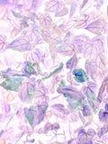 Konsten av negativa sidor för Anthuriumcrystallinum arkivfoto