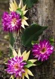 Konstgjord blomma på gammalt trä Arkivbilder