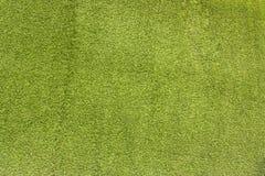 Konstgjort gräs. Fotografering för Bildbyråer