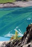 Konstgjord Gummilacka de Tusen dollar-Maison i Rhonen-Alpes, Frankrike arkivbilder