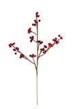 konstgjord härlig blomma Royaltyfria Bilder