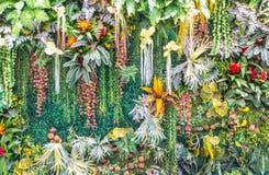 Konstgjord lodlinjeträdgårdvägg Royaltyfria Bilder