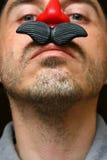 konstgjord näsa Royaltyfri Foto