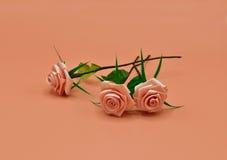 Konstgjord Rose03 Arkivfoton