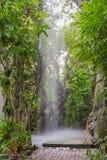 Konstgjord vattenfall i botanisk trädgård Arkivfoto