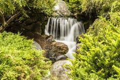 Konstgjord vattenfall i Dow Gardens, Michigan Royaltyfri Bild