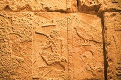 Konstgjord vägg från Egypten i egyptiskt museum Arkivfoto