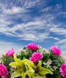 Konstgjorda blåttmoln för rosor Royaltyfri Foto