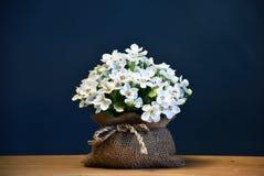 Konstgjorda blommor Royaltyfria Bilder