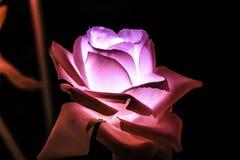 Konstgjorda blommor för nattfärgljus Royaltyfri Bild